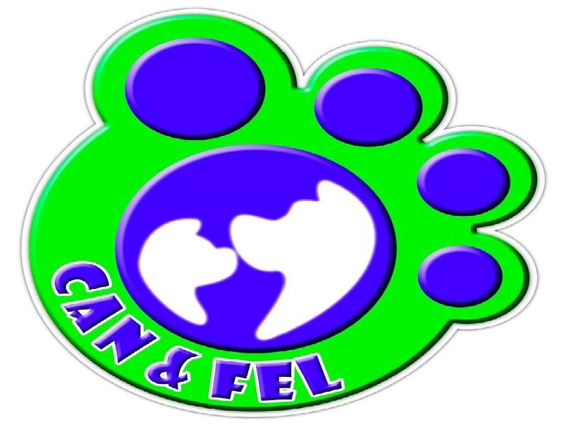 Can & Fel