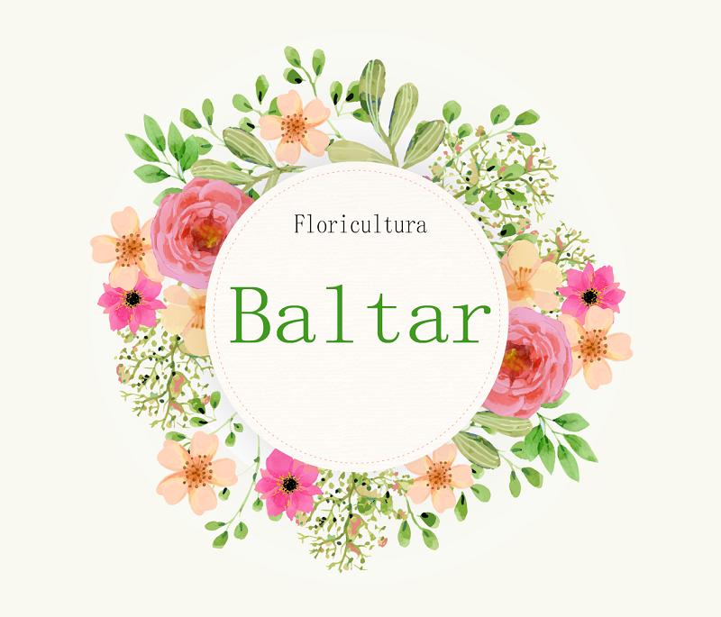 Floricultura Baltar