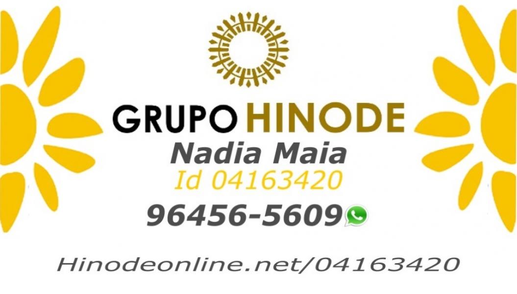 Consultora Hinode - Id 04163420